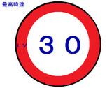 最高速度Lv30
