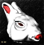 20110101 (習作) ウサギ