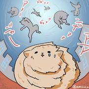 台風でも心配がいらないデブ猫