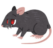 I play a mouse.