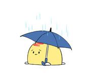 雨のオムかめ