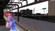 ぱちぇと⑨と電車