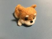 100均のイヌ(フェルトキット)