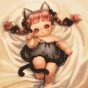 寝床の子猫