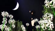 【睦月型静画祭2019】こんなに静かな光だけれど