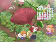 サケノミカレンダー11月