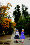 中秋から晩秋への散策
