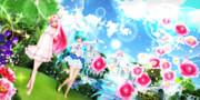【今日のYYBルカさん】輝きの景色…♪