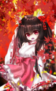 狐の巫女さんと秋