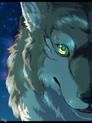 Wolf's night