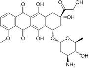 エピルビシン