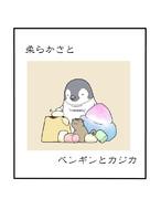 柔らかさとペンギンとカジカ