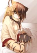 甘えたい三毛猫ちゃん