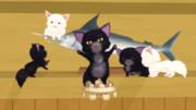 【MMD】猫&デブ猫モデル配布のご案内