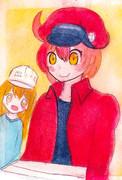 赤血球さんと血小板ちゃん