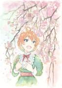 枝垂れ桜と歌織さん