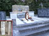 重桜ゆかりの地を訪ねて~航空母艦 瑞鶴之碑