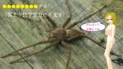 【冬休み企画クイズ・マイナー昆虫列伝-最終回】長ったらしい名前のクモ