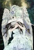 死を抱く天使