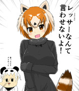 あっ!レッサーパンダだ!