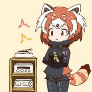 レッサーパンダちゃんとLP盤