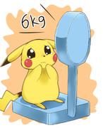 ピカチュウ 6kg