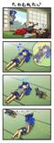 ネコに構ってほしい紫苑ちゃん