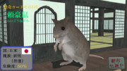 【怪奇カード-その147】頼豪鼠(らいごうねずみ)
