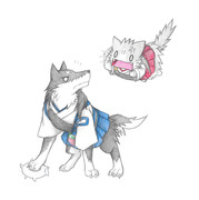 加賀犬と瑞鶴猫