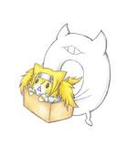ガンビア・ベイ猫を拾った深海浮き輪