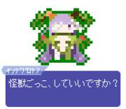 【ドット】キングプロテア