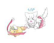翔鶴猫のハチマキを持っていくたぬき提督