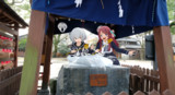 豊玉姫神社のナマズ様