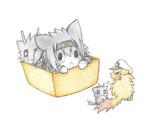 たぬき提督と涼月猫