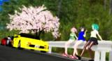 【THE・峠】峠の一本桜
