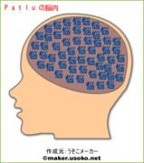 Patluの脳内