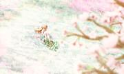 春と蝶のお昼寝