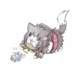 佐渡様と大和猫