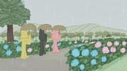 あじさいが咲いている公園 - hydrangea