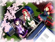 花見ドライブ