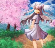 桜と天津風