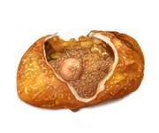カレーチャーパン