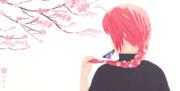 - 桜と少年 -