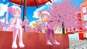 ぷち桜の午後