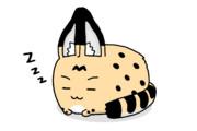 寝みんみー