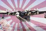 海上自衞隊 飛行艇 US-2