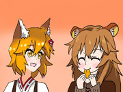キツネとタヌキどちらがいい?