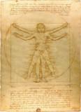 ポイテーロ的人体図.png