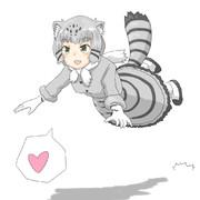 飛びつくマヌルネコちゃん