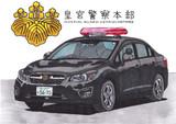 皇宮警察 パトカー